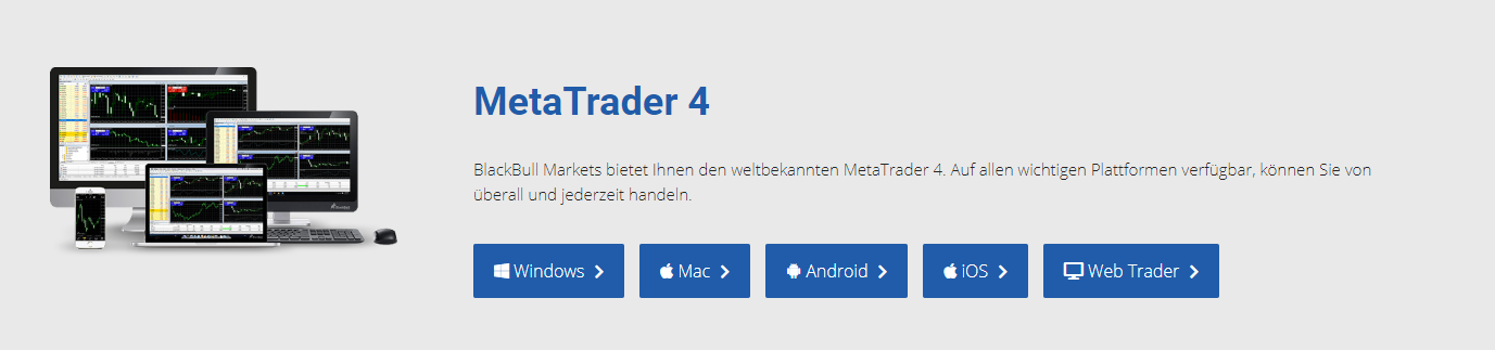Blackbull Markets MetaTrader 4
