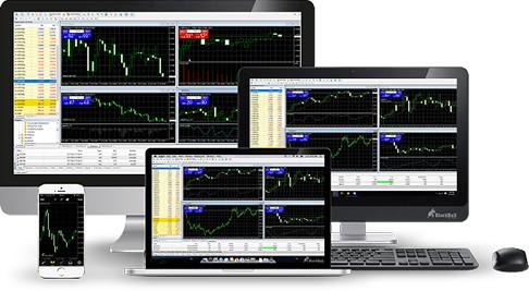 MetaTrader Forex Trading Platfform