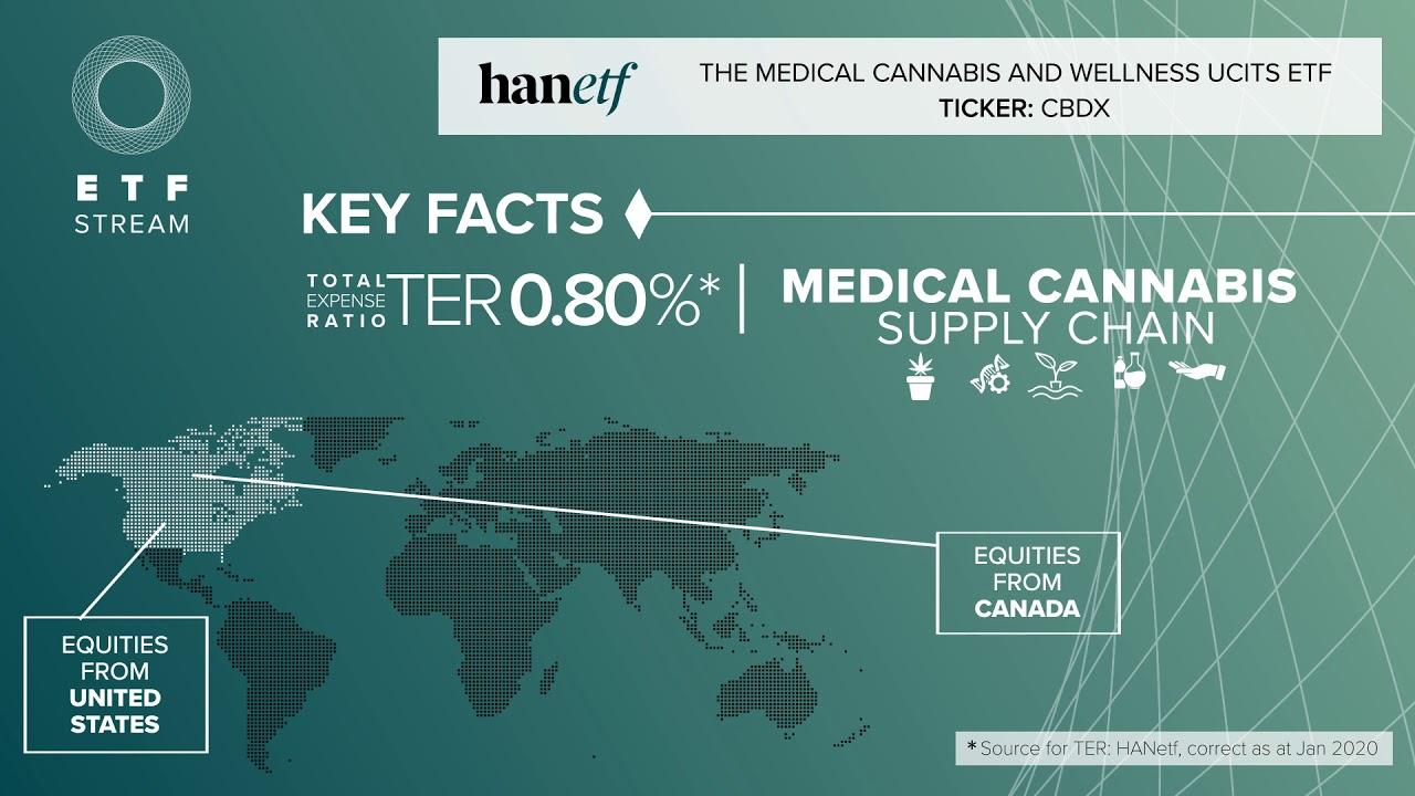 die besten cannabis aktien