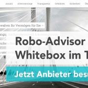 whitebox- test und erfahrungen